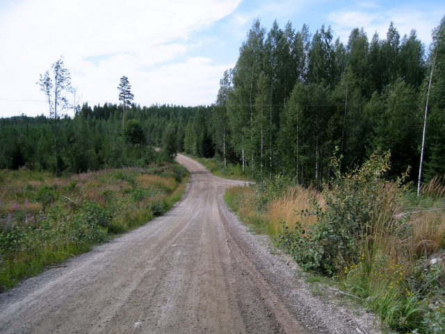 Forest gravel road in Finland